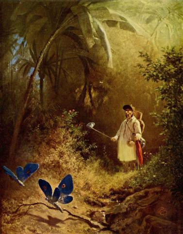 "Painting titled ""The Butterfly Hunter"". Photo by Carl Spitzweg."